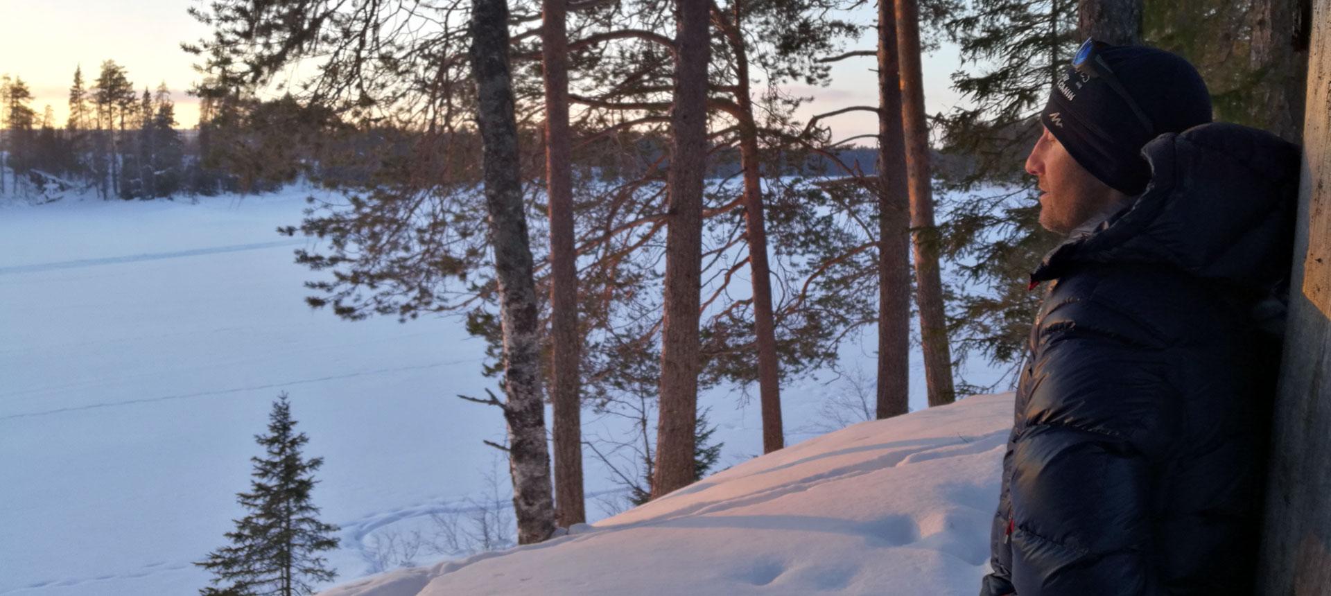 Rémy, votre guide de chien de traîneau en Suède, se ressource à la lumière du soleil couchant en lisière de forêt