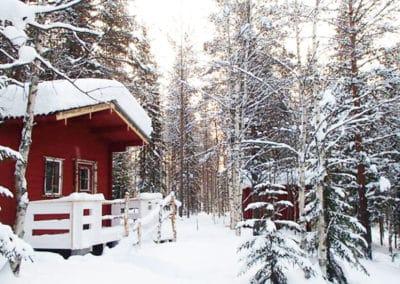 les chalets individuels de notre camp à Älgbäck en Laponie suédoise sont installés en pleine forêt