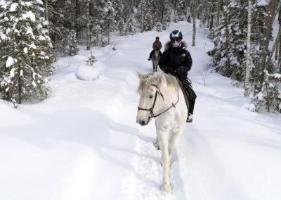 Promenade à cheval dans la neige en Laponie suédoise