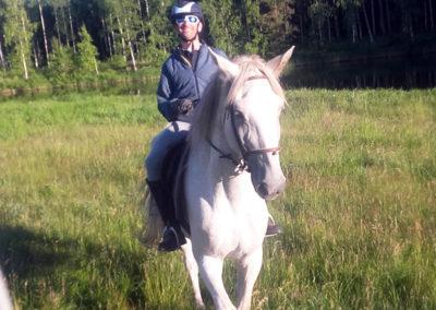 Rémy Coste monte son cheval nommé Amor, dans une lisière de la forêt lapone