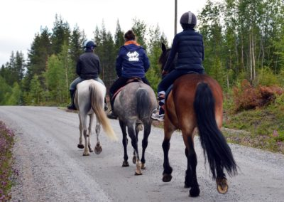 équitation sur un chemin lors d'un séjour été en laponie suédoise