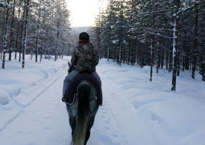 Balade à cheval avec Umiko dans la forêt suédoise