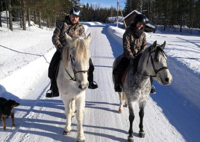 Promenade à cheval dans un village proche d'Älgbäck, chez nous en Laponie suédoise