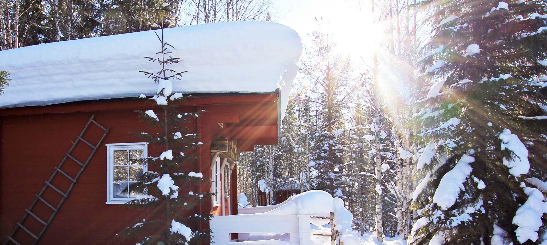 Notre camp au coeur de la Laponie suédoise idéal pour un voyage chien de traîneau !