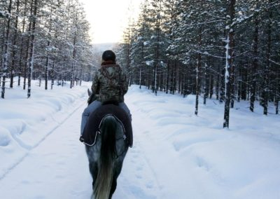 Séance d'équitation hivernale en forêt de Laponie suédoise