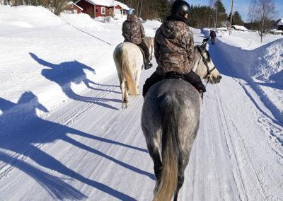 promenade à cheval en Suède