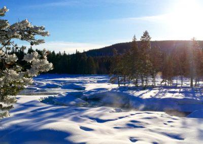 la Réserve Naturelle de Mårdselforsens et de ses impressionnants rapides